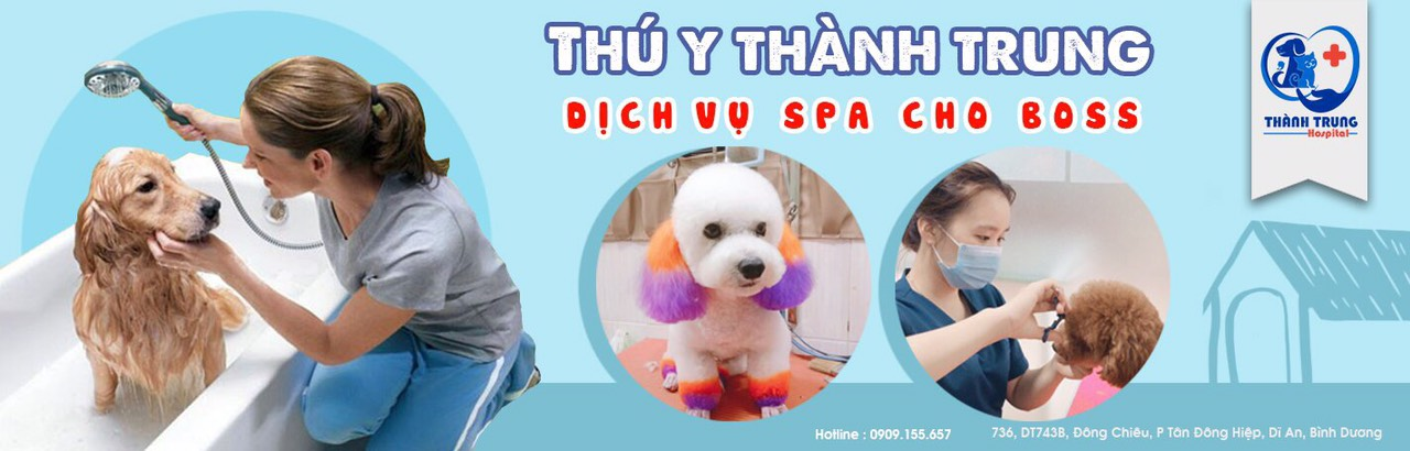 Thuythanhtrung-banner-spa