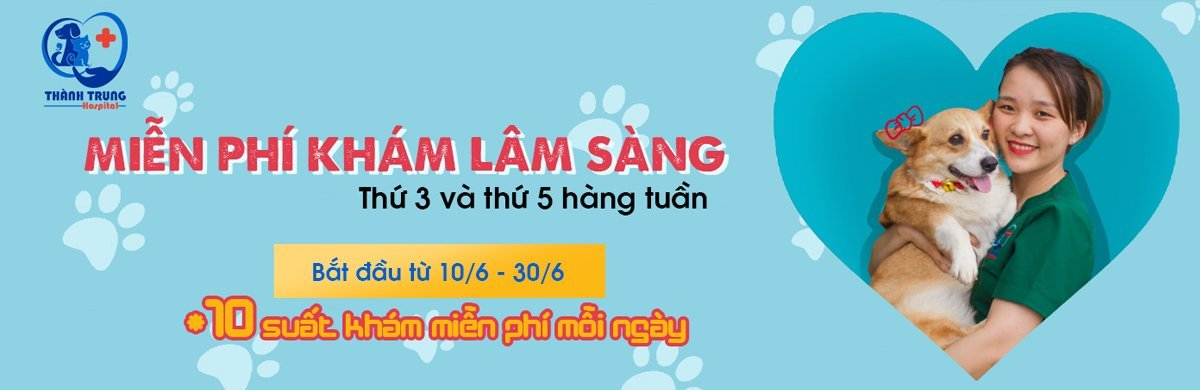 Thu-y-thanh-trung-banner