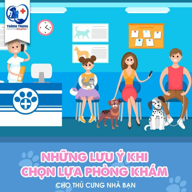phòng khám cho thú cưng