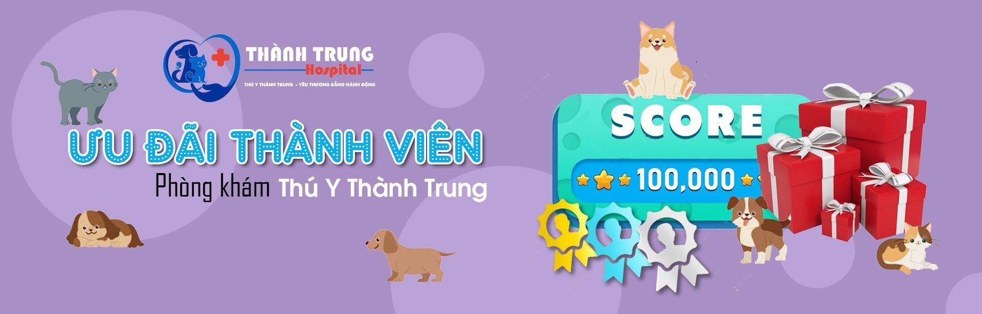 Uu Dai Thanh Vien