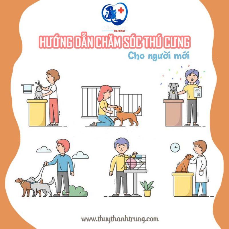 Hướng dẫn cách chăm sóc thú cưng cho người mới